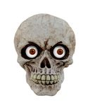 Crâne drôle Photographie stock
