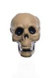 Crâne effrayant de Halloween Photographie stock libre de droits