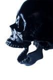 Crâne effrayant de veille de la toussaint Photographie stock libre de droits