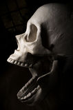 Crâne effrayant de veille de la toussaint Photo libre de droits