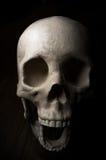 Crâne effrayant de veille de la toussaint Image libre de droits