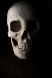 Crâne effrayant de veille de la toussaint Photographie stock