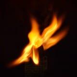 Crâne en flammes image libre de droits