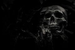 Crâne et nature Photo libre de droits