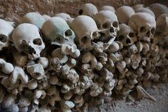 Crâne et os images libres de droits