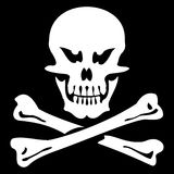 Crâne et os Image stock