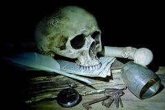 Crâne et os Images stock