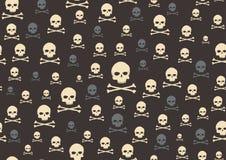 Crâne et os Photos stock