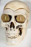 Crâne et pièces de monnaie photos stock