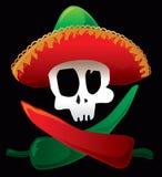 Crâne et poivrons mexicains Photographie stock