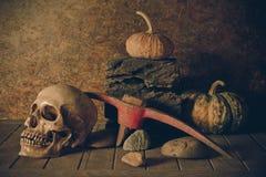 Crâne et potiron toujours de la vie sur le bois de construction Photographie stock libre de droits