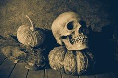 Crâne et potiron toujours de la vie sur le bois de construction Photos stock