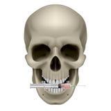 Crâne et seringue humains Photo libre de droits
