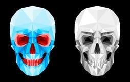 Crâne facetté par verre Photographie stock