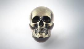 Crâne fait main de savon photo libre de droits