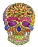 Crâne floral Photos stock