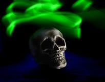 Crâne humain d'isolement Images libres de droits
