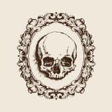 Crâne humain dans le cadre en filigrane Illustration de vecteur Photographie stock