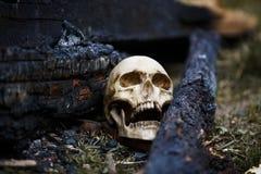 Crâne humain parmi les charbons dans les cendres du feu images stock