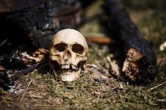 Crâne humain parmi les charbons dans les cendres du feu photo libre de droits