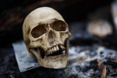 Crâne humain parmi les charbons dans les cendres du feu photographie stock
