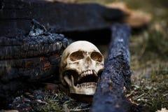 Crâne humain parmi les charbons dans les cendres du feu photographie stock libre de droits