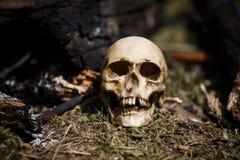 Crâne humain parmi les charbons dans les cendres du feu photos libres de droits