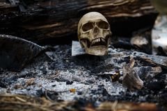 Crâne humain parmi les charbons dans les cendres du feu images libres de droits