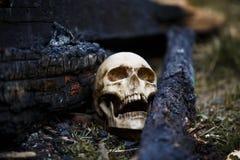 Crâne humain parmi les charbons dans les cendres du feu photo stock