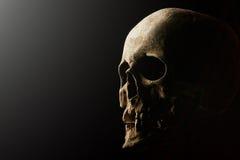 Crâne humain sur un fond noir Effet de fusée Images stock