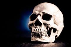 Crâne pour Veille de la toussaint Photographie stock libre de droits