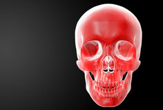 Crâne rouge Images libres de droits