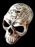 Crâne spécial Images stock