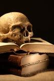 Crâne sur des livres image stock
