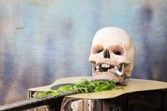 Crâne sur la guitare et la feuille verte de cannabis Photo libre de droits