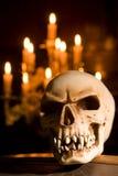Crâne sur le cercueil Photo libre de droits