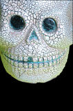 Crâne sur le noir photos stock