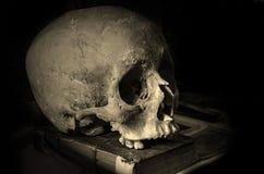 Crâne sur un vieux livre Images stock