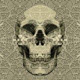 Crâne texturisé Photo libre de droits
