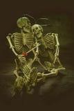 Crâne toujours d'amour de la vie Images stock