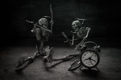 Crâne toujours d'amour de la vie Image libre de droits