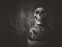 Crâne toujours d'art de la vie Photos libres de droits