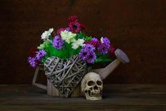 Crâne toujours de la vie Photos stock