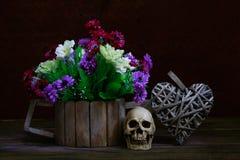 Crâne toujours de la vie Images stock