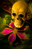 Crâne toujours de la vie Photographie stock libre de droits