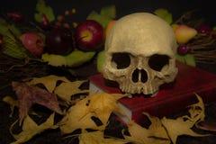 Crâne toujours de la vie et feuille d'érable humains photo stock