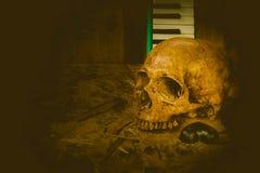 Crâne toujours de musique de la vie Image libre de droits