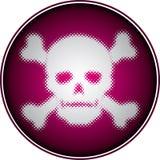 Crâne tramé Photographie stock libre de droits