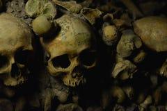 Crânes image stock