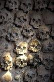 crânes Images stock